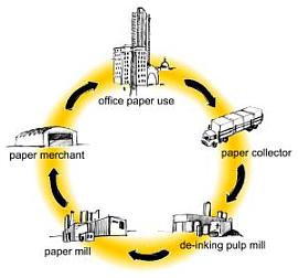The cycle - how Local Paper works